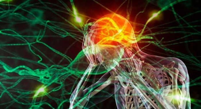 Día Mundial del Cerebro   Padecen esclerosis múltiple 20 mil mexicanos