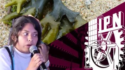 Lady Coral tenía razón | Científicos crean energía limpia con algas, cebollas y estiércol