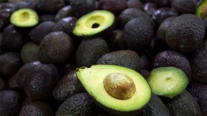 Nutriólogos del IMSS recomiendan comer 100 gramos de aguacate al día