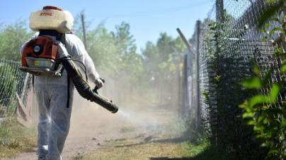 Esta temporada no habrá fumigación masiva; será dirigida al mosco transmisor del dengue, zika y chikungunya