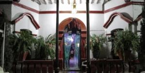 #HalloweenAlterado | Paloween: una fiesta llena de mitos, tradición e interrogantes