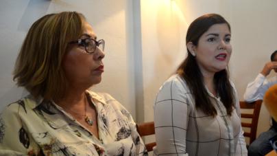 Llama diputada a gobernador a no pintar de color partidista apoyos a damnificados
