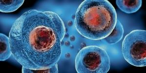Científicos eliminan con trasplantes de células madre el VIH en seis infectados