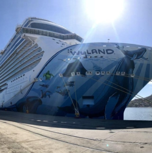 En Mazatlán suspenden arribo de dos cruceros por huracán Willa