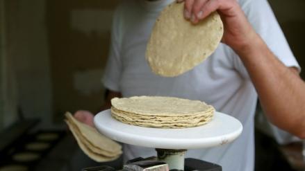 Profeco llama a ciudadanía a denunciar tortilleros que vendan el kilo a más de 17 pesos