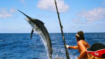 PescaMexico | La app de Conapesca y Sagarpa para conocer los sitios de pesca deportiva