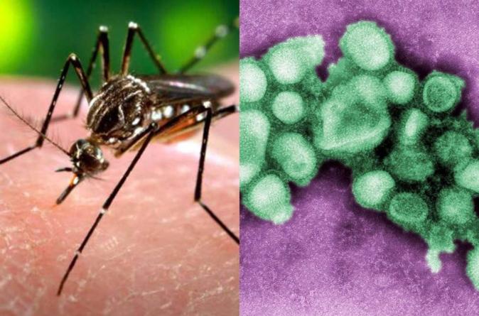 Reportan 18 casos de influenza AH1N1 y 8 de Zika en Sinaloa