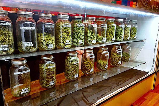Cofepris da visto bueno a 38 productos elaborados con cannabis