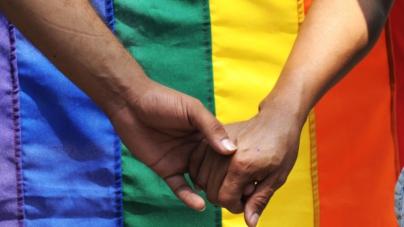 Senadores impulsan por unanimidad seguridad social para parejas homosexuales en México