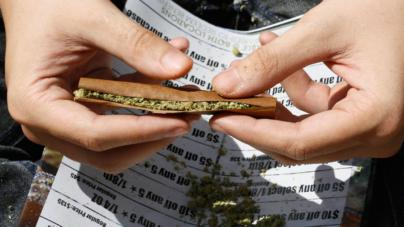 Conoce las propuestas de Olga Sánchez Cordero para regular consumo de marihuana