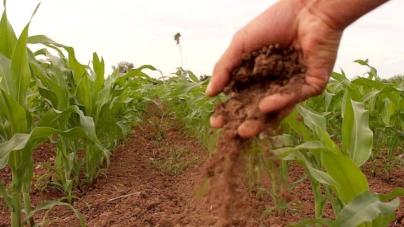 Integrará Conacyt estrategia de protección ante químicos en medio ambiente, agua y alimentos