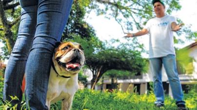 Mediación Vecinal | Buscarán reducir los conflictos en las colonias de Culiacán