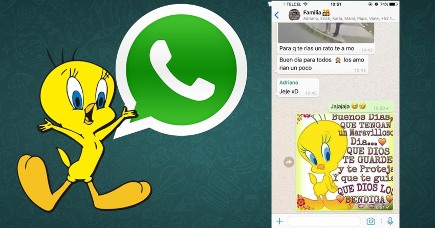 Tu tía ya no podrá seguir enviándote cadenas ni imágenes de Piolín por WhatsApp
