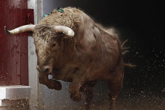 Activistas protestan en el congreso en contra de las corridas de toros