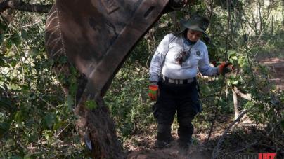 Dos años rascando la tierra… | Doña Isabel busca a su hijo: un policía municipal de Culiacán desaparecido hace dos años