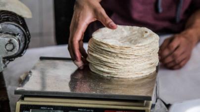¡Tortillazo!   Industriales preparan aumento al precio del kilo de tortilla