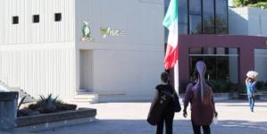 Efecto ESPEJO | Crisis de la cultura en Sinaloa: ¿qué pasa con el ISIC?