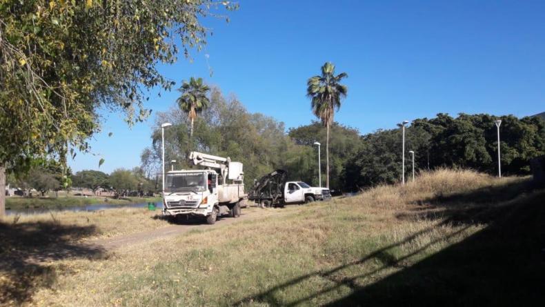 Con cableado sin cobre, van 300 luminarias reparadas en el parque Las Riberas: Ayuntamiento