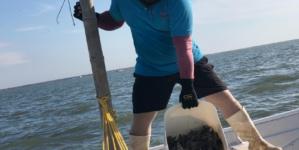En el mar | Abren veda del camarón; sacan millones para apoyar a pescadores