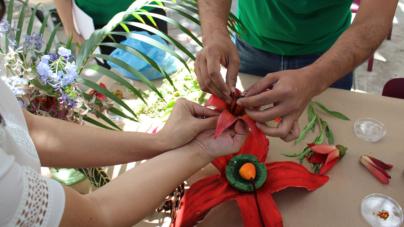"""""""Día Nacional de los Jardines Botánicos"""" celebra la naturaleza y la conservación vegetal"""