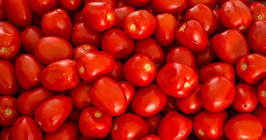 'Guerra del tomate' termina | Se logra un nuevo acuerdo entre Mexicanos y el Departamento de Comercio de EU