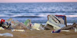 Ciudadanos y Empresas Mantendrán Sanas Playas Mazatlecas en Semana Santa