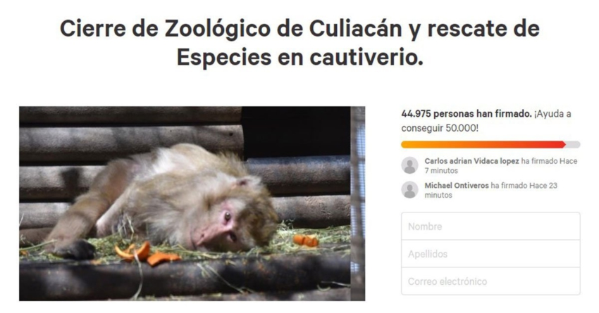 """No lo cerrarán   """"Son chismes supuestas irregularidades en Zoológico de Culiacán"""", asegura alcalde"""