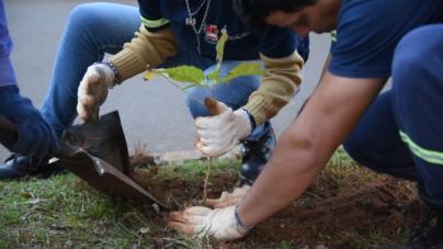 Invitan a sinaloenses a participar en concurso de cortometrajes para celebrar el Día de la Tierra