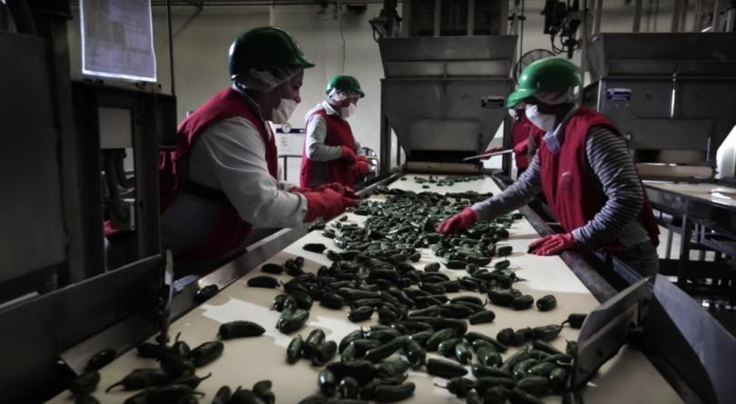 Pierde Sinaloa 2 mil empleos en abril; se han generado casi 7 mil en lo que va del año