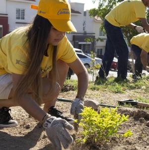 Sembremos Conciencia | Rehabilita Coppel Comunidad 28 parques públicos en todo México