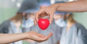Día del Trasplantado | 70% de los transplantes en México provienen de donadores vivos