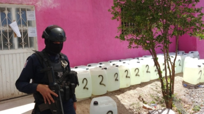 Golpe millonario | SSPE asegura narcolaboratorio en Alcoyonqui, Sanalona