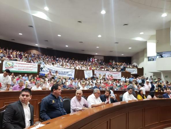 Ley Orgánica   No entendemos qué les preocupa, dice Graciela Domínguez ante manifestación de la UAS