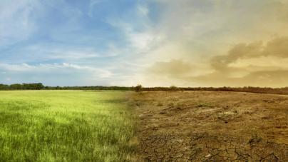 Cuenta regresiva | En tan solo 30 años el cambio climático podría acabar con la humanidad