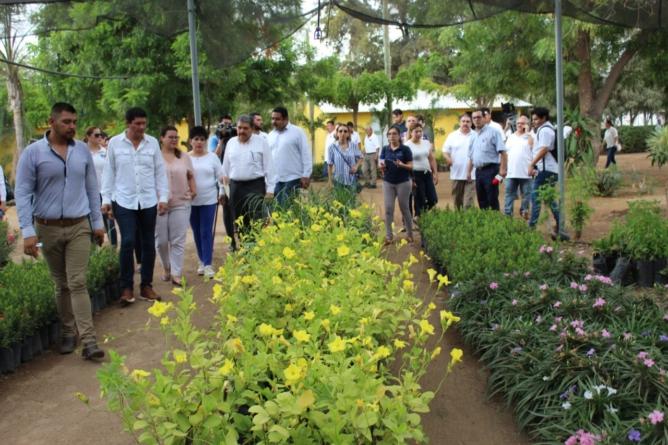 Contribuye SEDESU a la construcción de andadores ecológicos en el Desarrollo Urbano Tres Ríos