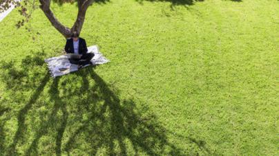 """Sociedad Botánica   """"Bajo la sombra de un árbol se vive mejor"""""""
