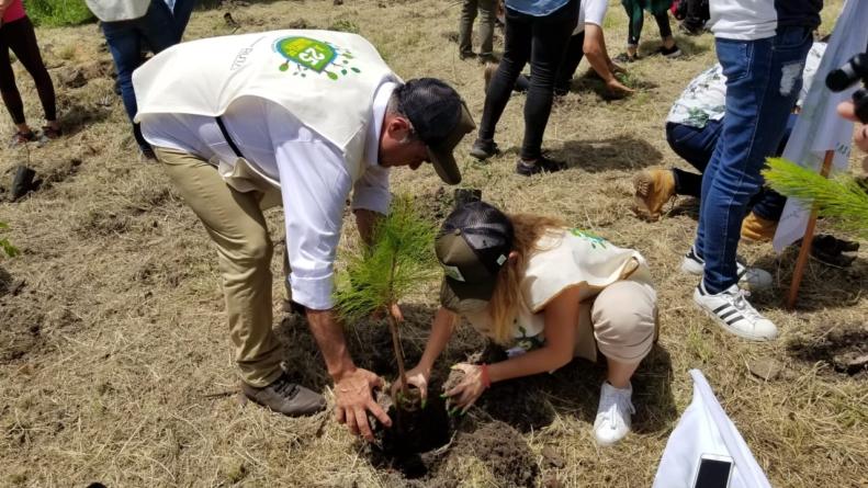 """Efecto ESPEJO   Sinaloa dentro del programa """"Por 25 Millones de árboles"""""""