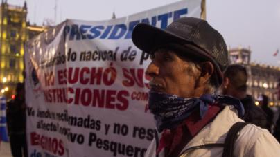 Efecto ESPEJO | La pesca y el campo, sin respuestas de la 4T