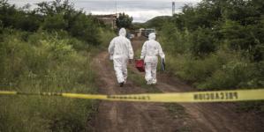 Efecto ESPEJO | Ciencia contra morbo: No humanos los huesos hallados en Culiacán