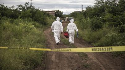 Efecto ESPEJO   Ciencia contra morbo: No humanos los huesos hallados en Culiacán