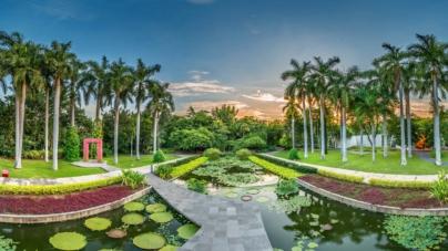 Jardín en escena   Un recorrido de arte y performances llega este 31 de octubre al Botánico