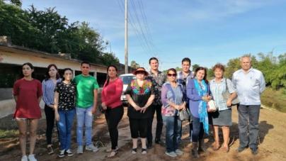 Alzan la voz contra tala de árboles en el Canal Rosales
