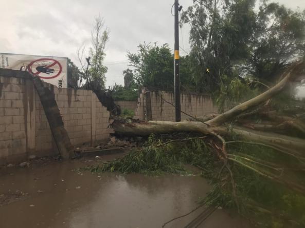 El recuento de los daños | Así afectó 'Narda' a Sinaloa