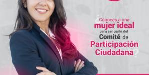 Abren periodo para postular al Comité de Participación Ciudadana