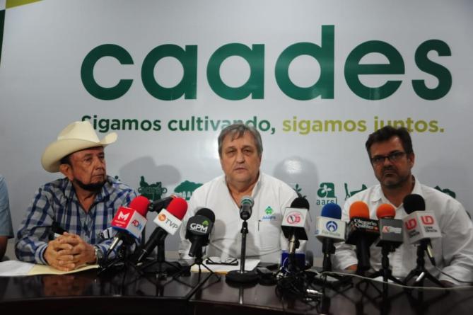 """PEF 2020   Agricultores sinaloenses """"revientan"""" contra presupuesto para el campo"""