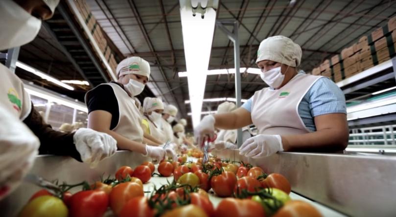 Efecto ESPEJO | Crece alerta por posible recesión en México