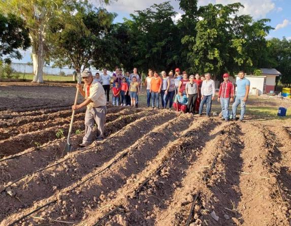 Van 27 huertos escolares   Avanza programa en primarias de Sinaloa y Guasave