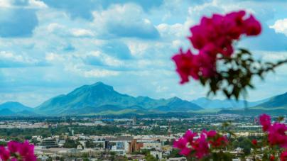 Efecto ESPEJO | En Mazatlán y Culiacán el amor a la tierra puede más