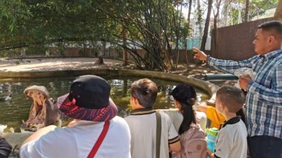 Zoológico de Culiacán estará abierto en Navidad y Año Nuevo