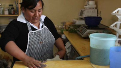 Casi 12 mil trabajadoras domésticas han sido afiliadas al IMSS: Zoé Robledo